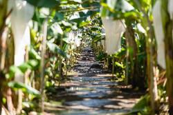 Retorno a la Agroindustria